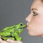 Besando sapos y buscando a Cenicienta